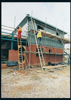 Pole Ladder 3m (11 Rungs)