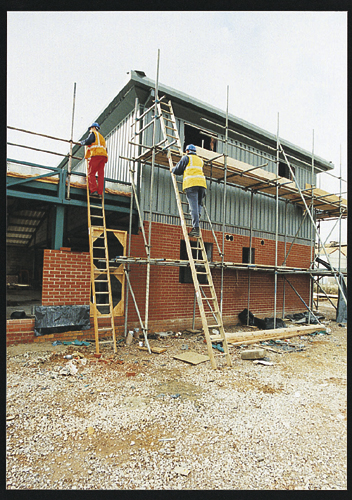 Pole Ladder - 6m (23 Rungs)