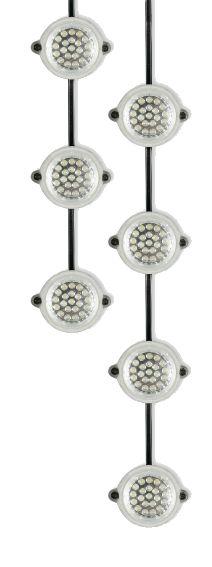 Defender LED Festoon Light